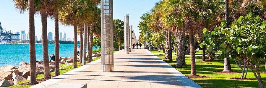 """Condado Miami-Dade comienza transición al """"nuevo normal"""""""